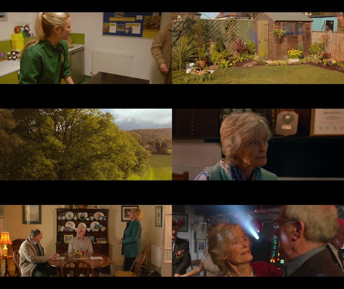 Golden Years 2016 1080p AMZN WEBRip DDP5 1 x264-PTP