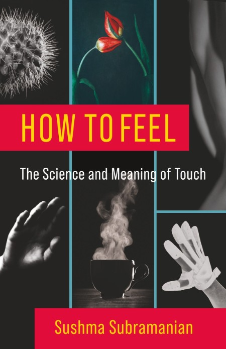 How to Feel - The Science and Meaning of Touch