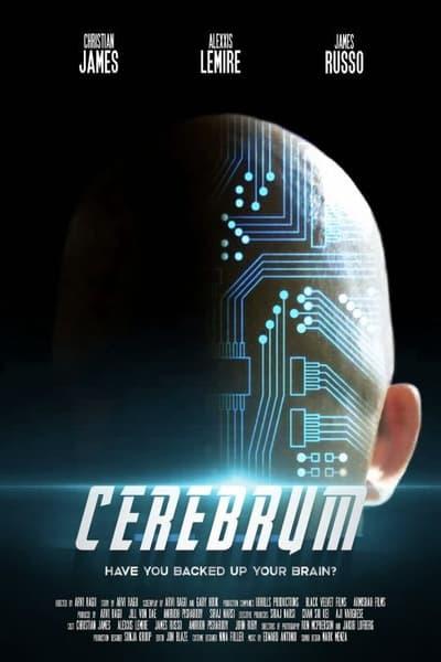 Cerebrum 2021 1080p WEBRip x265-RARBG