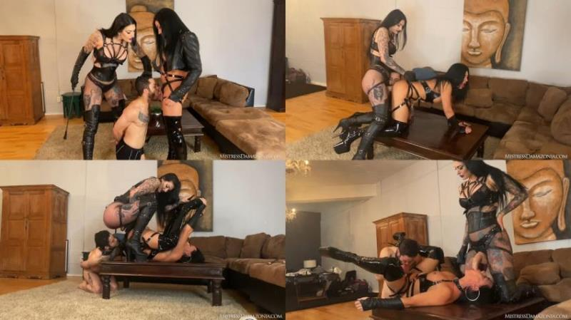 Mistress Damazonia, Mistress Viper ~ Teaching a cuck bitch how to fuck ~ Mistressdamazonia.com/Clips4sale.com ~ FullHD 1080p