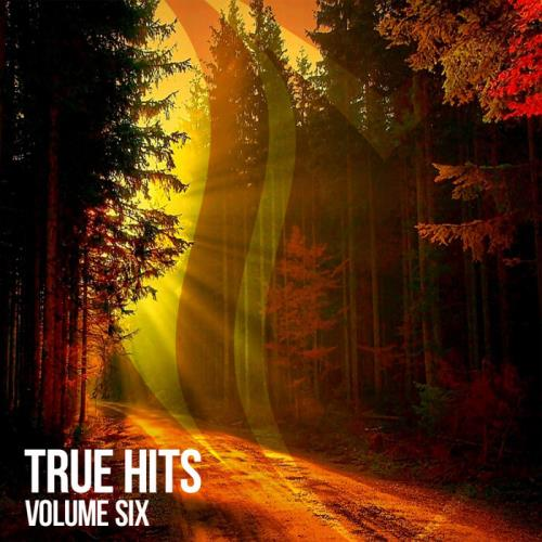 SUANDA TRUE: True Hits Vol 6 (2021)