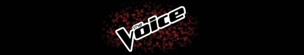 The Voice S20E13 720p HEVC x265-MeGusta