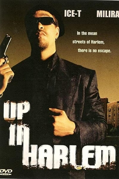 Up In Harlem 2004 WEBRip XviD MP3-XVID