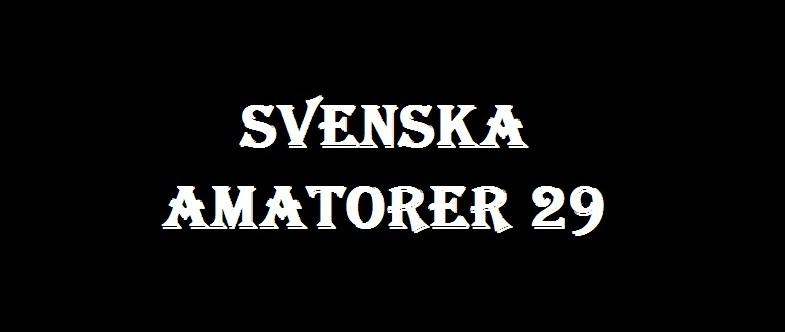 Svenska Amatorer #29 [DVDRip 352p 1.36 Gb]