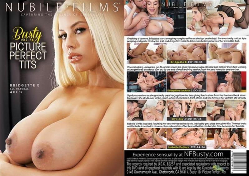 Busty Vol. 18: Picture Perfect Tits [WEB-DL 540p 1.59 Gb]