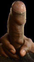 Pornhub.com - Tradzmenz (aka King Dagger Wagger) - Forced Bi Prison Stories [SD/HD/FullHD 480p/720p/1080p]