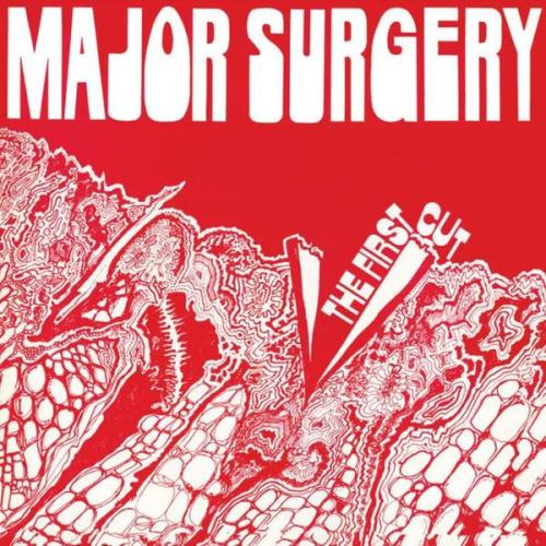 Major Surgery - The First Cut (2013)