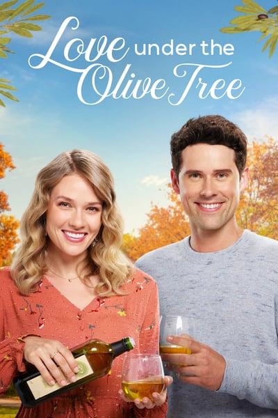 Love Under The Olive Tree 2020 1080p AMZN WEBRip DDP5 1 x264-NTb