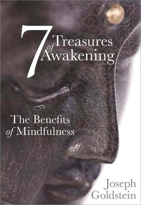 Mindfulness by Joseph Goldstein