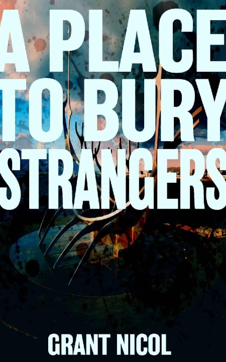 A Place To Bury Strangers by Grant Nicol