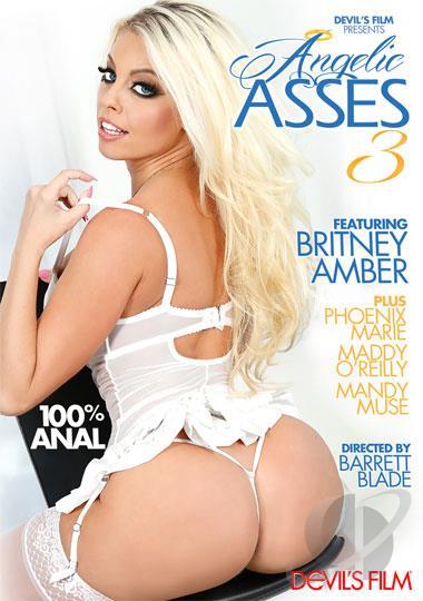 Angelic Asses 3 [DVDRip 400p 1.21 Gb]